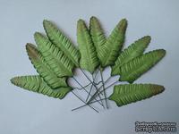 Набор бумажных листьев папоротника, цвет - зеленый, 70 мм, 10 шт