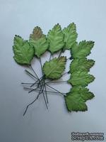 Листики, цвет зеленый, размер - 35мм, 10 шт.