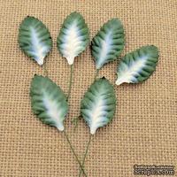 Листики, цвет белый с зеленым, размер - 45мм, 10 шт.