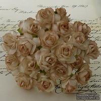 Дикая роза, цвет светло-коричневый, диаметр - 30мм, 1 шт.