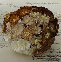 Маргаритки, микс цветов (белый, коричневый), 25мм, 50 шт.