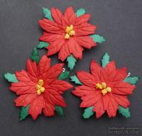 Пуансеттия, цвет красный, диаметр - 6.5-7см, 1 шт.