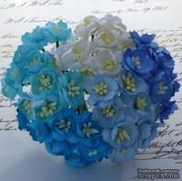 Набор цветов вишни (голубые и белые оттенки), 25мм, 50 шт.