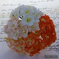 Набор цветов вишни (оранжевые и белые оттенки), 25мм, 50 шт.