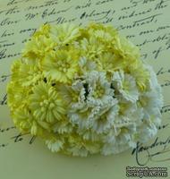 Маргаритки, микс цветов (белый, кремовый), 25мм, 50 шт.