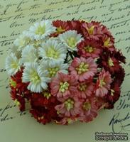 Маргаритки, микс цветов (белый, красный), 25мм, 50 шт.