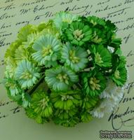Маргаритки, цвет белый и оттенки зеленого, диаметр - 25мм, 50 шт.