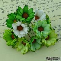 Ромашки, микс цветов (зеленый, белый), 45мм, 5 шт.