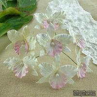 Орхидеи, цвет кремовый с розовым, размер - 33х40мм, 5 шт.