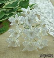 Орхидеи маленькие, цвет белый, 22х30мм, 5 шт.