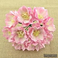 Набор лотусов, бело-розовый, 35 мм, 5 шт.