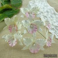 Орхидеи, цвет белый с розовым, 33х40мм, 5 шт.