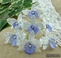 Орхидеи, цвет белый с голубым/лиловым, размер - 33х40мм, 5 шт.