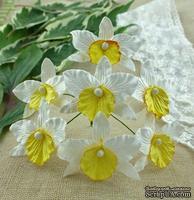 Орхидеи, цвет белый с желтым, 33х40мм, 5 шт.