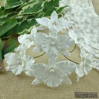 Орхидеи, цвет белый, 33х40мм, 5 шт.