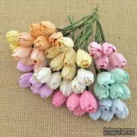Набор тюльпанов (пастельные оттенки), 10мм, 10 шт.