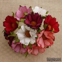 Ромашки, микс цветов (красный, розовый, белый), 45мм, 5 шт.