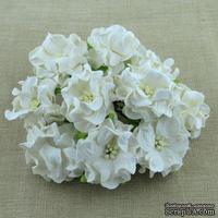Гардения, цвет белый, 3,5см, 1 шт.