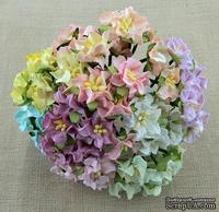 Набор гардений маленьких, микс пастельных цветов, 25мм, 10 шт.
