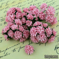 Астры от Thailand, цвет нежно-розовый, 15мм, 10 шт