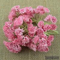 Гипсофила от Thailand, цвет светло розовый, 10 шт