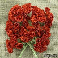 Гипсофила от Thailand, цвет красный, 10 шт