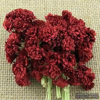 Гипсофила от Thailand, цвет темно-красный, 10 шт