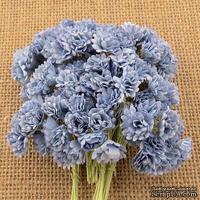 Гипсофила от Thailand, цвет голубой, 10 шт