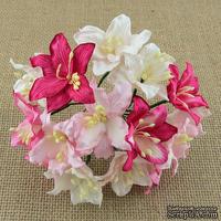 Лилии от Thailand, микс-набор:  розовые и белые, 30 мм, 50 шт
