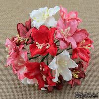 Лилии от Thailand, микс-набор: красные и белые, 30 мм, 50 шт.