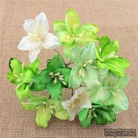 Лилия, цвет- микс  зеленый и белый, 3 см., 50 шт