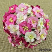 Цветы яблони, цвет  розовый микс,  2-2,5 см, 50 шт