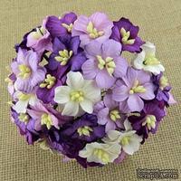 Цветы яблони, цвет  фиолетовый микс,  2-2,5 см, 50 шт