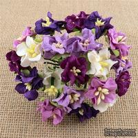 Гардении, цвет бело-фиолетовый микс, набор цветов из 50 шт., диаметр 2 - 2,5 см