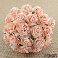 Дикая роза, цвет бледно-персиковый, 3 см., 1 шт