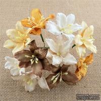 Цветок лилии, цвет бело-коричневый, 3 см., 50 шт