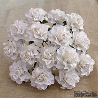Розы от Thailand, цвет белый, 30 мм, 1 шт