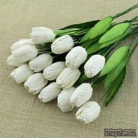 Тюльпаны со стеблем от Thailand, белые, 10 шт