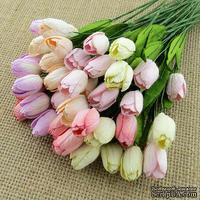 Набор тюльпанов со стеблем (пастельные оттенки), 12 мм, 10 шт