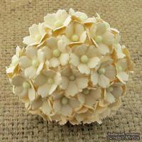 Цветочки  Sweetheart, цвет deep ivory, 15мм, 10 шт.