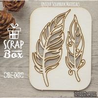 Чипборд ScrapBox - Набор Птичьи перья №2