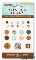 Набор брадсов 21 штука Зимний дневник