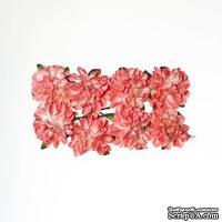 Астры из бумаги, розовые, 8 шт.