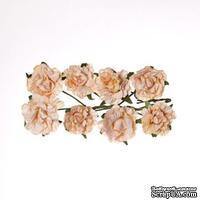 Розочки кудрявые, из бумаги, персиковые, 30 мм, 8 шт.