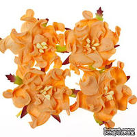 Гардении, набор 4шт., диаметр 5см, персиковые