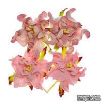 Гардении, набор 4шт., диаметр 5см, розовые и бело-розовые
