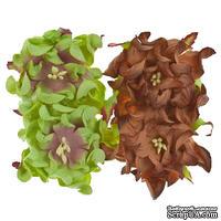 Гардении, набор 4шт., диаметр 5см, коричневые и светло-зеленые