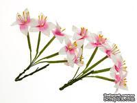 Набор лилий на стебле от ScrapBerry's, цвет бело-розовый, 10  шт.