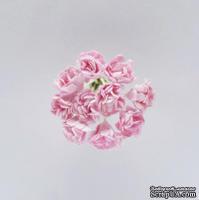 Гипсофилы, набор 10 шт., диаметр 1 см, нежно-розовые