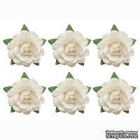 Цветы чайной розы, диаметр -18 мм, 6 шт., белые